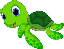 Cute turtle cartoon stock illustration