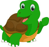 Cute turtle cartoon Royalty Free Stock Images