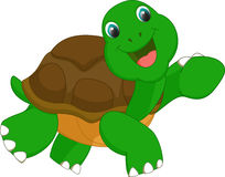 Cute turtle cartoon Royalty Free Stock Image