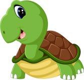 Cute turtle cartoon Stock Photography