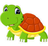 Cute turtle cartoon Stock Images