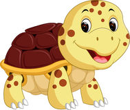 Cute turtle cartoon Stock Image