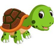 Cute turtle cartoon. Illustration of Cute turtle cartoon Royalty Free Stock Image