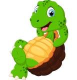 Cute turtle cartoon posing Stock Photo