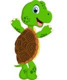 Cute turtle cartoon posing Stock Images