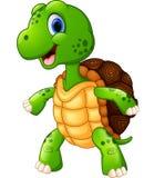 Cute turtle cartoon posing Stock Photos