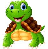 Cute turtle cartoon posing Royalty Free Stock Images