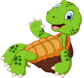 Cute turtle cartoon posing Royalty Free Stock Image