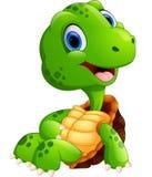 Cute turtle cartoon posing Royalty Free Stock Photography