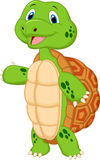 Cute turtle cartoon presenting Stock Image