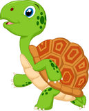 Cute turtle cartoon running Royalty Free Stock Photos