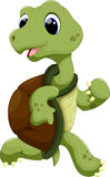 Cute turtle cartoon running Stock Images