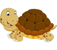 Cute turtle cartoon running Royalty Free Stock Image