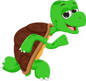 Cute turtle cartoon running Stock Photography