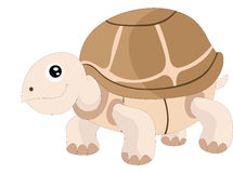 Cute turtle, illustration Stock Image