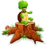 Cute turtle posing on tree stump Royalty Free Stock Photography