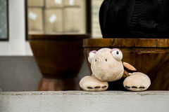 Cute turtle puppet toy posing inside camera stock images