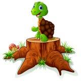 Cute turtle sit on tree stump Stock Photography