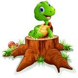 Cute turtle sit on tree stump Stock Image