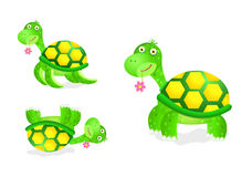 Cute turtle toy icon set Royalty Free Stock Images