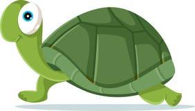 Cute Turtle Vector Cartoon Illustration Stock Image