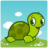 Cute turtle walking in the grass Royalty Free Stock Photos