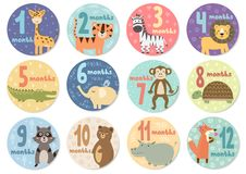 Cute twelve months stickers with animals for babies. Vector illustration Stock Image