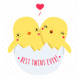 Cute twins baby chickens in egg vector illustration with heart Royalty Free Stock Image