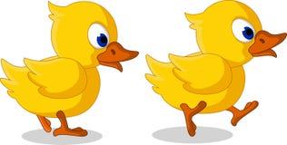Cute two baby duck cartoon walking Stock Photography