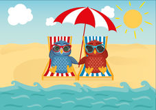 Cute two owls with sunglasses on vacation lying down on the beach. By the sea and relaxing on a deck chair and a parasol. Owlet. Postcard to the feast. Free Royalty Free Stock Photography