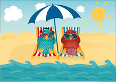 Cute two owls with sunglasses on vacation lying down on the beach. By the sea and relaxing on a deck chair under an umbrella and listen to music and read books royalty free illustration
