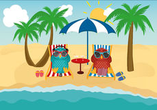 Cute two owls with sunglasses on vacation lying down on the beach Royalty Free Stock Images
