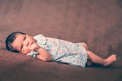 Cute two weeks old newborn baby girl lying down. Eyes open and looking around wearing a floral dress Stock Images