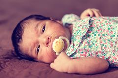 570f9d28c6d Cute two weeks old newborn baby girl with a pacifier. Close up portrait of a