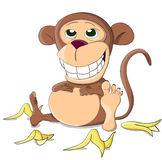 Cute unusual full vector monkey Stock Photo