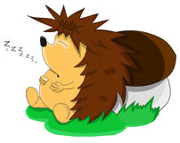 Cute unusual sleeping vector cartoon hedgehog Stock Images