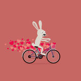 Cute Valentine`s Day card: cartoon bunny rabbit riding bike Stock Photography