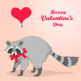 Cute Valentines Day card with cartoon character racoon Stock Image