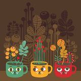 Cute vases with flowers - cat faces. Stock Photography