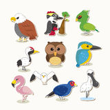 Cute vector bird set Royalty Free Stock Images