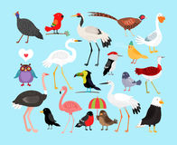 Cute vector birds Royalty Free Stock Photos