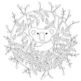Cute vector coloring page with koala climbing on the eucalyptus tree illustration in color, hand drawn in realistic Royalty Free Stock Photos