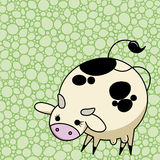 Cute vector Cow Royalty Free Stock Image