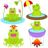 Cute vector Icons : Frog in the pond Stock Images