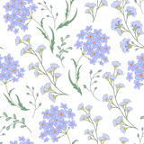 Cute vector seamless floral pattern with flowers and herbs. Delicate blue plants on white background Royalty Free Stock Photography
