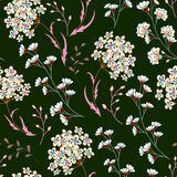 Cute vector seamless floral pattern with flowers and herbs. Delicate pink white plants on dark green background Stock Images