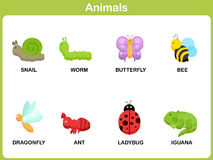 Cute vector Set of Animal for kids Stock Photography