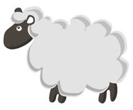Cute vector sheep. Lovely vector lamb isolated on white background Vector Illustration