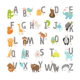 Cute vector zoo alphabet. With cartoon animals isolated on white background. Grunge letters, cat, dog, turtle, elephant, panda, alligator,lion, zebra Royalty Free Stock Photos