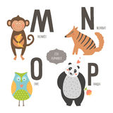 Cute vector zoo alphabet. With cartoon animals isolated on white background. M, n, o, p letters. Monkey, numbat, owl and panda Stock Photography